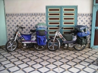 03 the mopeds