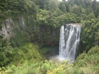 020 New Zealand